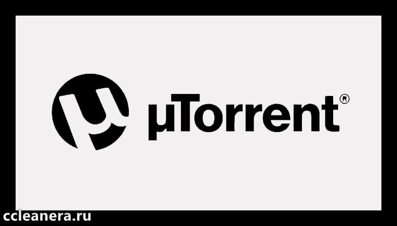 CCleaner torrent3